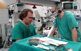 Dr. Jon Olabe_Dr. Gonzalez_Llanos_Curso Microcirugia 2015