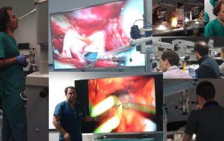 Dr. Jorge Mura_Dr. Gonzalez-Llanos_Curso Microcirugia2015